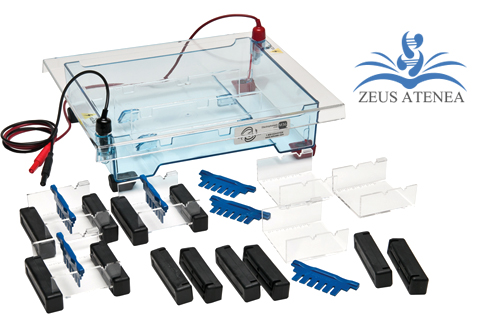 kit_educational_zeus_atenea