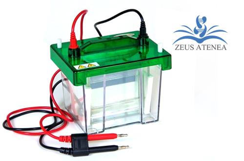 sistema_de_electroforesis_zeus_atenea